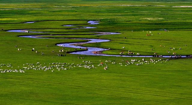 下雪天就想吃铜锅涮羊肉,平顶山这家大草原生态羊,陪你来过冬!插图1