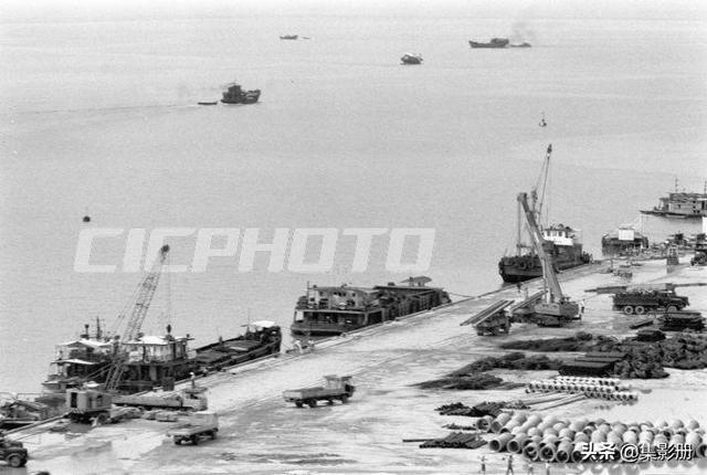 深圳经济特区,1981年