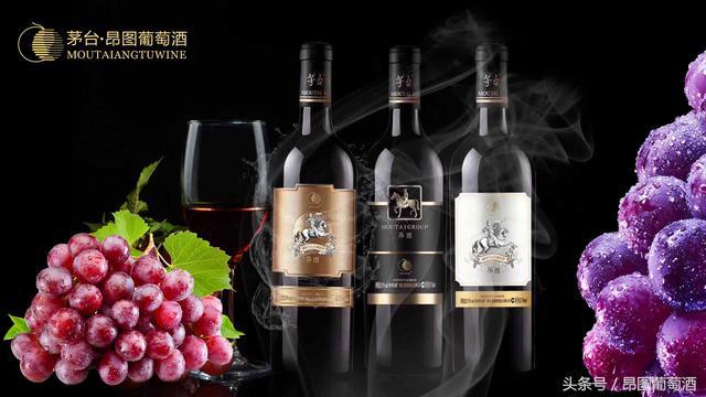 选购进口葡萄酒牢记10要点是哪些呢?