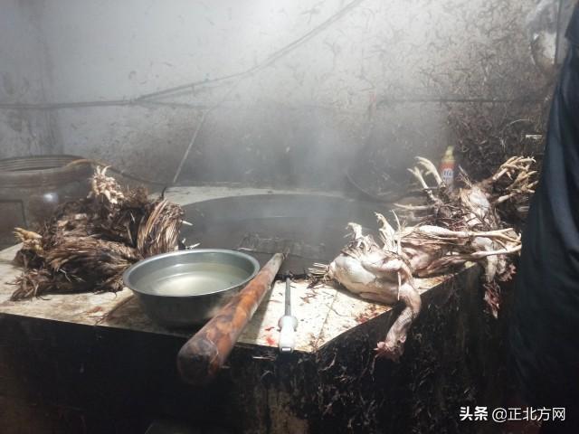 12月29日·内蒙古要闻插图2