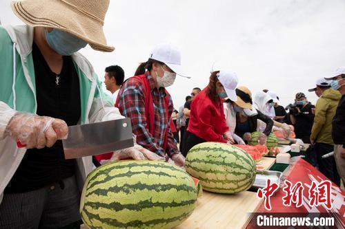 宁夏特色农产品吸引八方客商 签约逾15亿-今日股票_股票分析_股票吧