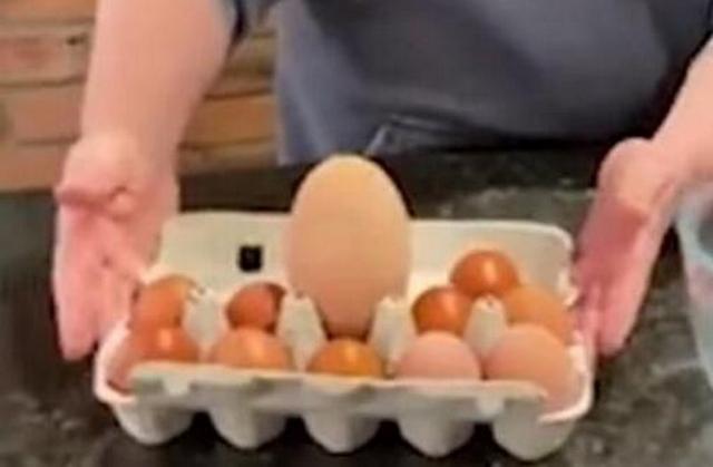 外国一女子家母鸡产下10厘米高巨蛋,她敲开后全家人瞬间欢呼-第1张
