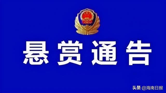 12月29日·海南要闻快报插图