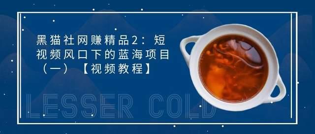 黑猫社网赚精品27:短视频风口下的蓝海项目(一)【视频教程】
