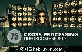 时尚摄影交叉处理人像预设Lightroom Presets #3675243