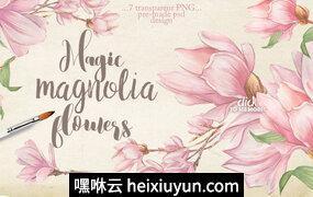 高清水彩木兰花图案素材 Magnolia flowers