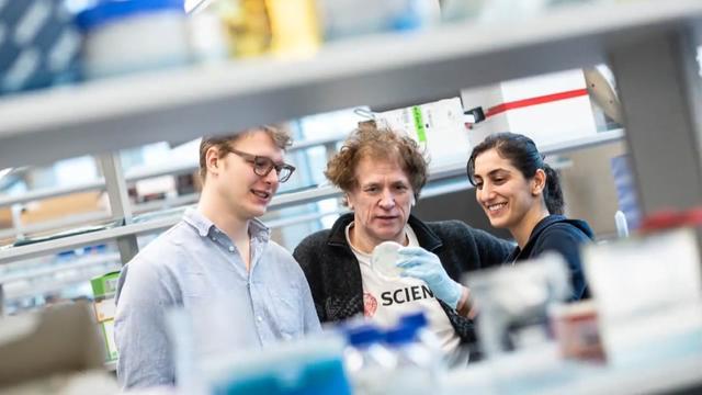 重磅!UBC教授研发抗新冠药物重症服后病毒2天消失!