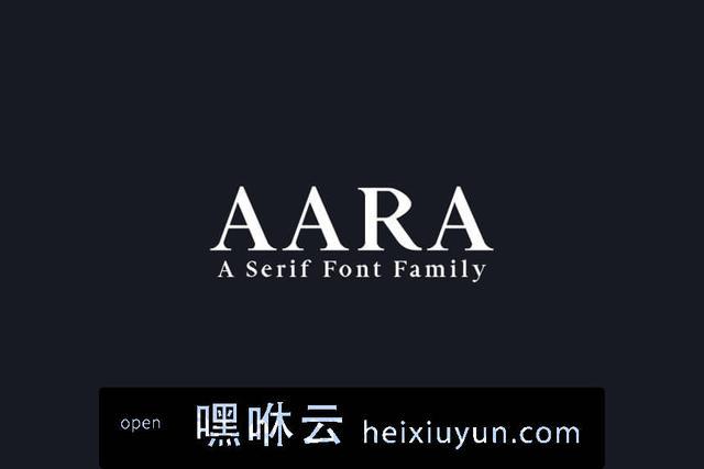 嘿咻云-经典漂亮的衬线字体 Aara Serif 9 Font Family Pack #1377631
