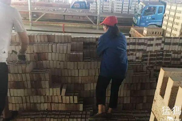 为救7岁血癌儿子 安阳滑县女子日搬几千块砖头