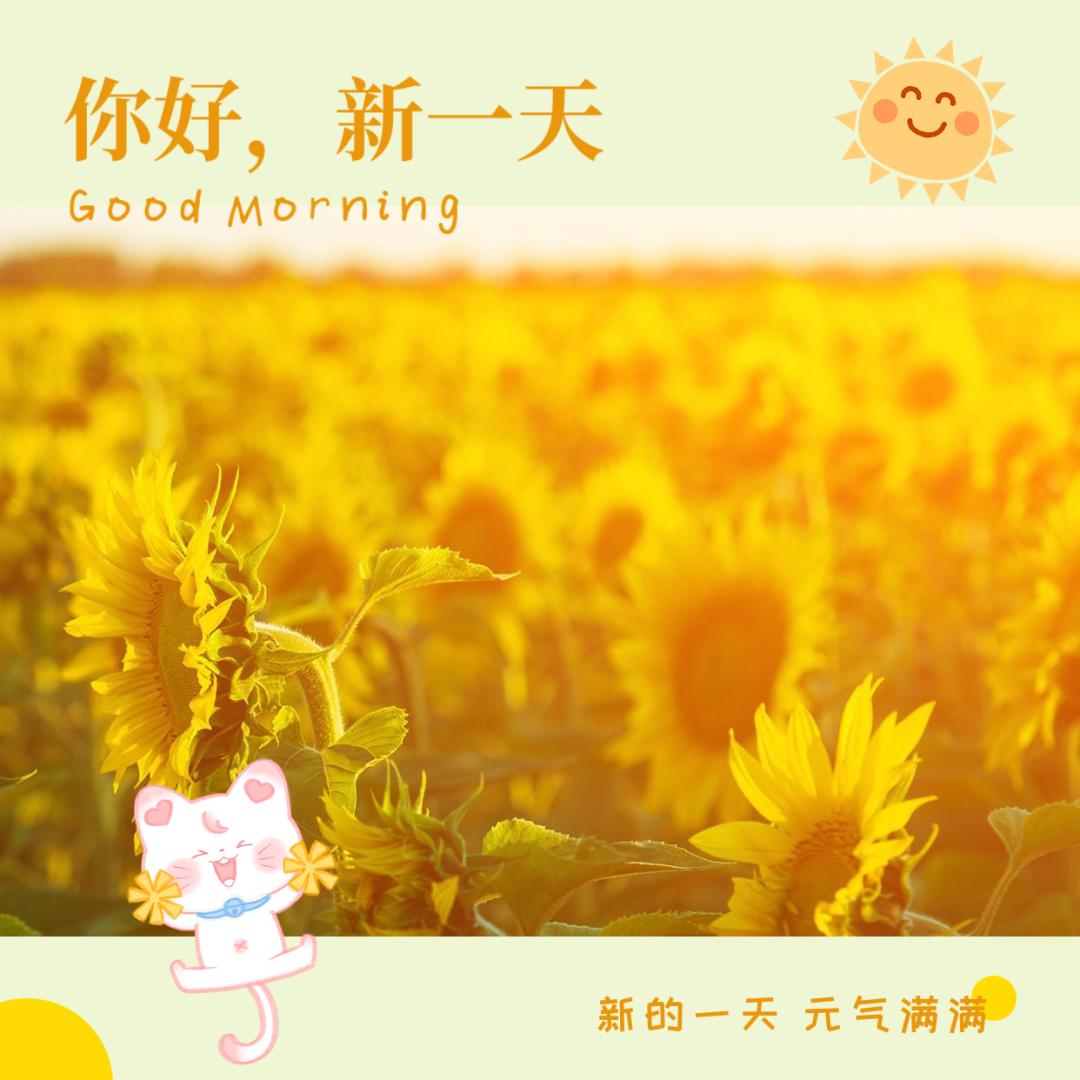积极向上的早安心语句子带励志图片