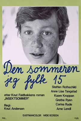 15岁的夏天海报