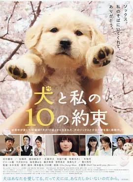 狗狗与我的十个约定 电影海报