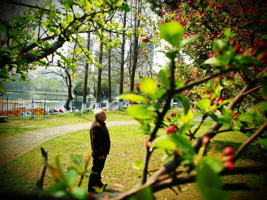 菱湖,三月的情怀