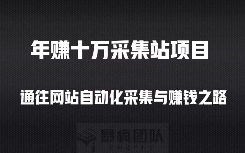 暴风团队出品年入十万+采集站项目教程(无本博客表哥授课)