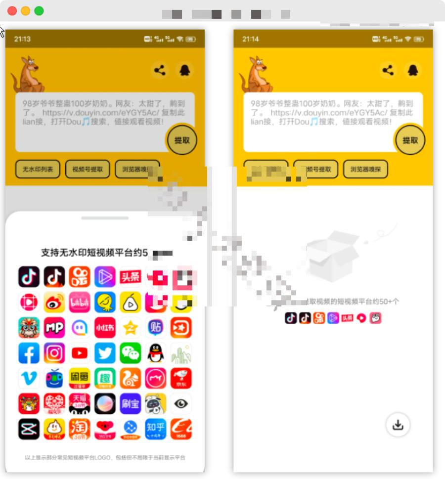 袋鼠下载短视频解析App,支持全网五十多个平台视频解析!